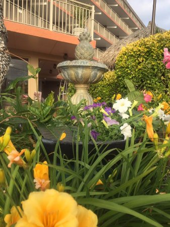 Waikiki Oceanfront Inn: Pineapple fountain