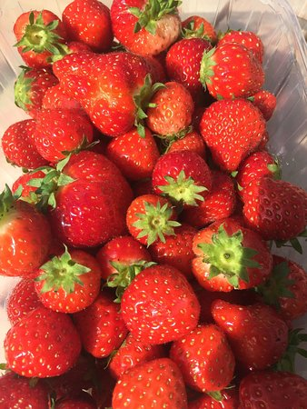Dedham, UK: It's summer! Freshly picked deliciousness!