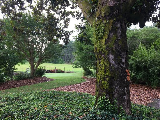 Salem, Karolina Południowa: What a wonderful place!