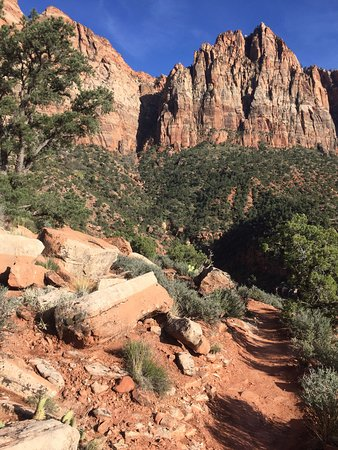 Watchman Trail - hike near the Visitor Centre