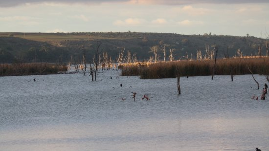 Mannum, Australie : photo0.jpg