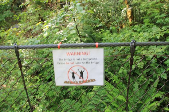 Horne Lake Caves Provincial Park: bridge to hiking trail