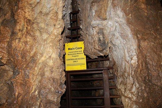 Horne Lake Caves Provincial Park: cave entrance