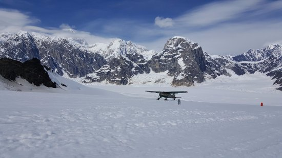 Talkeetna Air Taxi: A sister aircraft landing on the Ruth Glacier. On a beautiful day, you can see the peak of Denal