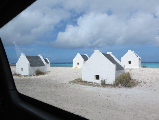 写真Voyager Bonaire Tours枚