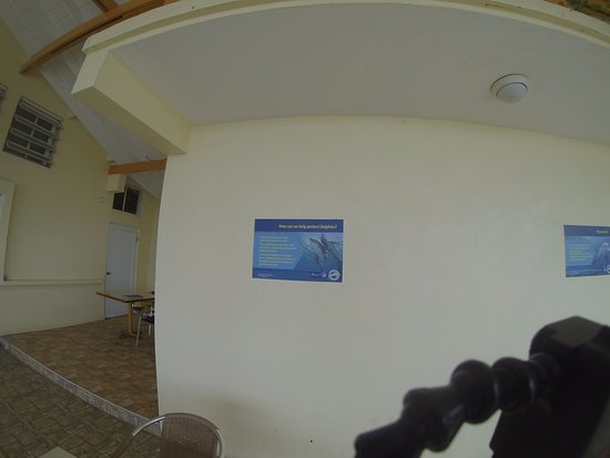 Dive St. Kitts : PHOTOS OF THE ENTRANCE TO THE DOLPHIN ENCOUNTER...THEY WILL NOT LET YOU NEAR IT UNLESS YOU HAVE