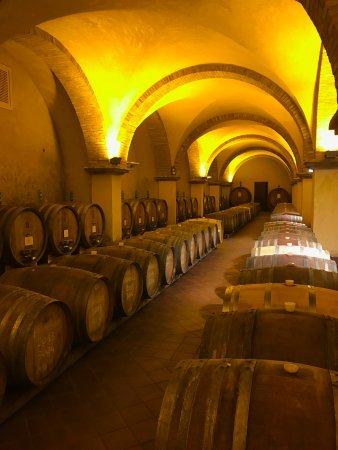 Pienza, Italy: Solaria Winery