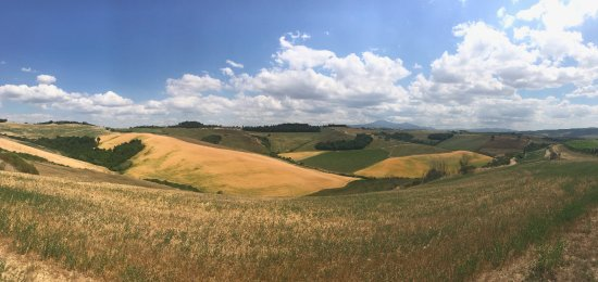 Pienza, Italy: View From Innocenti Vineyard