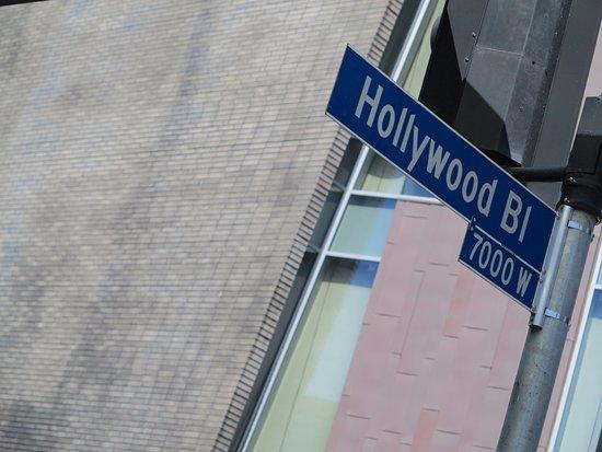 Hollywood La Brea Motel: Sinalização da Hollywood Boulevard, onde está a Calçada da Fama