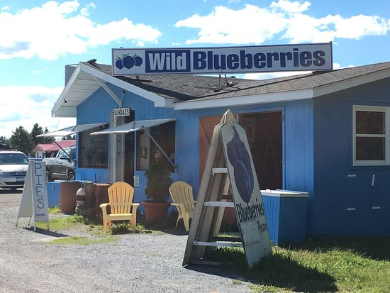McKay's Wild Blueberry Farm Stand