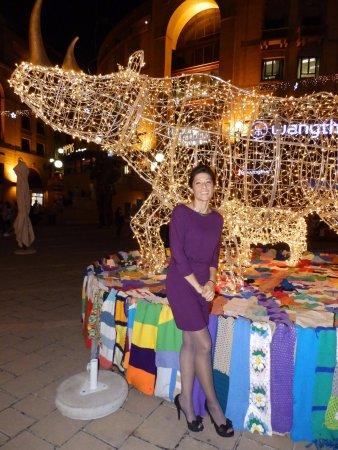 ساندتون, جنوب أفريقيا: A Rhino of Christmas Lights