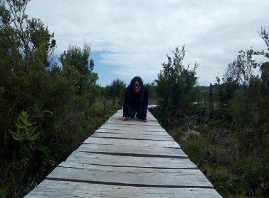 Isla Chiloe, Chile: Perniendo el rastro