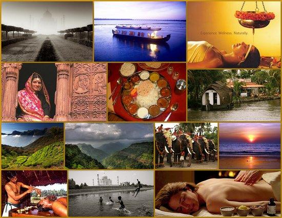 Tour Trips India