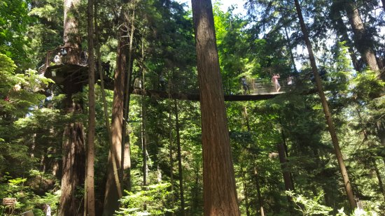 North Vancouver, Canadá: Capilano Suspension Bridge Park