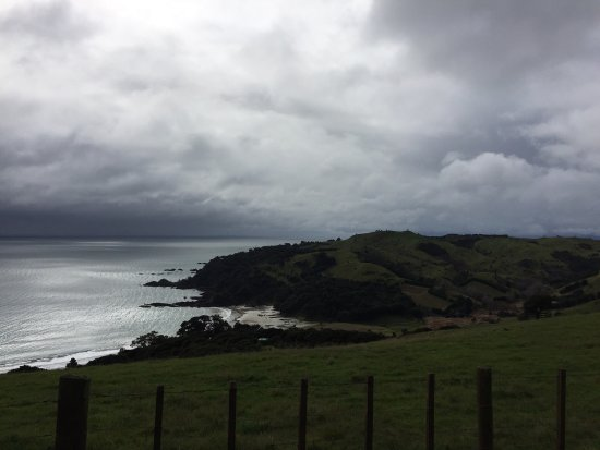 Waiheke Island, New Zealand: photo1.jpg