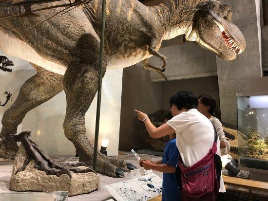 Gunma Natural Museum : Great Dinosaurs