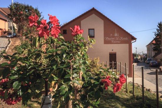 Región de Moravia del Sur, República Checa: Vinohrad a rosárium