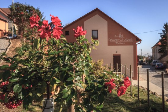 Vinarstvi U Kostela Polesovice