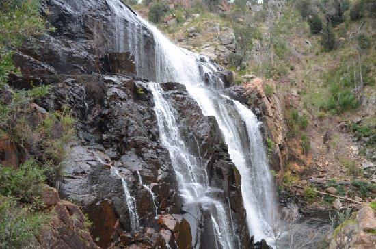 Hamilton, Australia: McKenzie Falls III