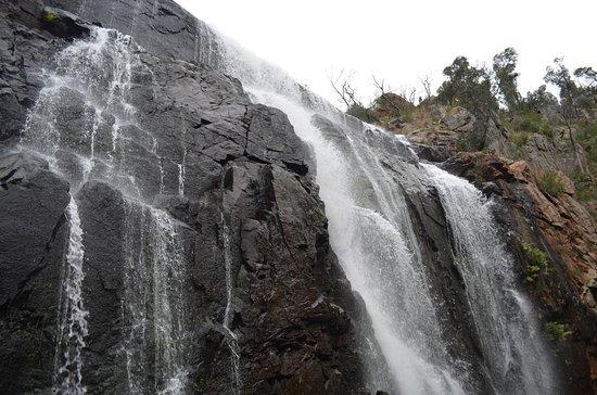 Hamilton, Australia: McKenzie Falls IV