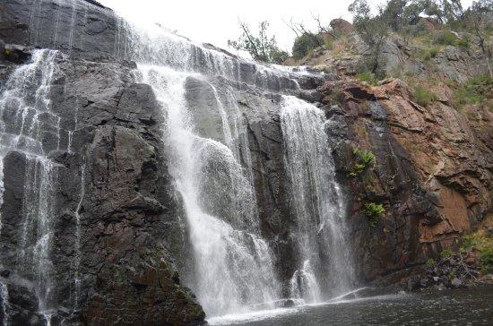 Hamilton, Australia: McKenzie Falls VII
