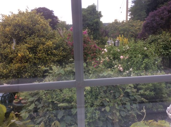Par, UK: Outside our window