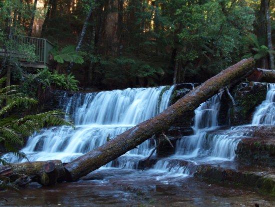 Deloraine, Australia: Upper Falls