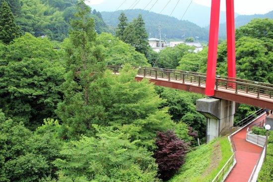 Shikokuchuo, Japan: この橋を渡って行きます