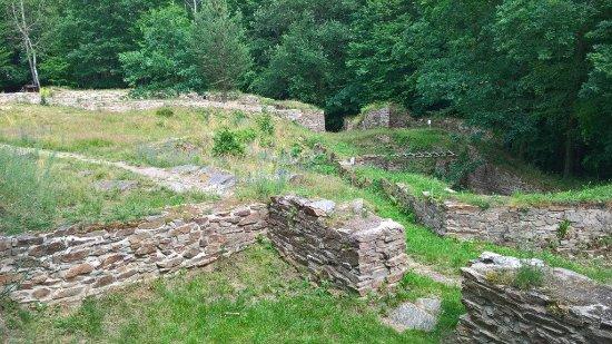 Castle Sion