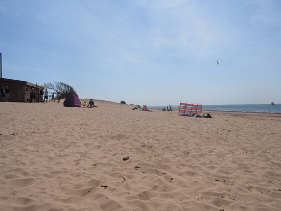 Exmouth, UK: General Beach photo