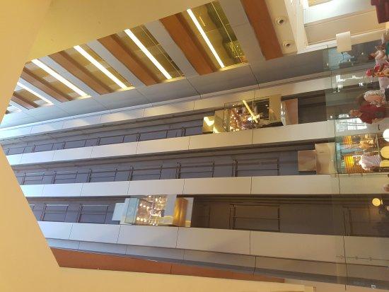 Hotel Nuevo Madrid: 20170611_104804_large.jpg