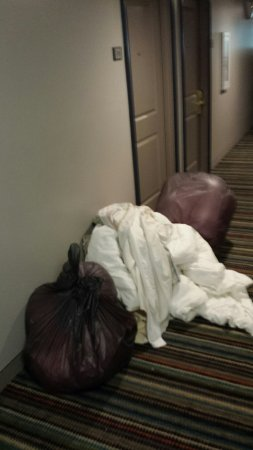 Waldorf, Maryland: Stuff that was placed in the hall from 215 party