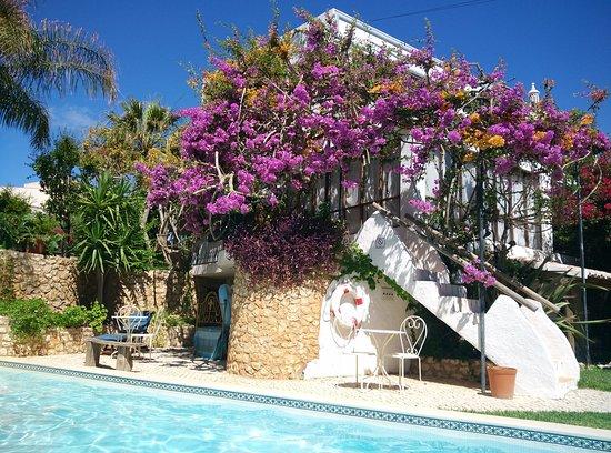 Uma Casa a Beira Sol: IMG_20170626_111146_large.jpg
