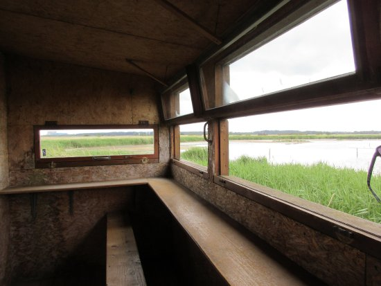 Westleton, UK: RSPB Minsmere - A View Inside One of the Hides
