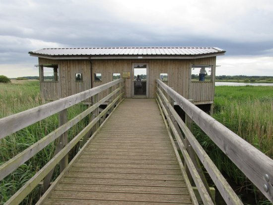 Westleton, UK: RSPB Minsmere - A Wheelchair Accessible Hide
