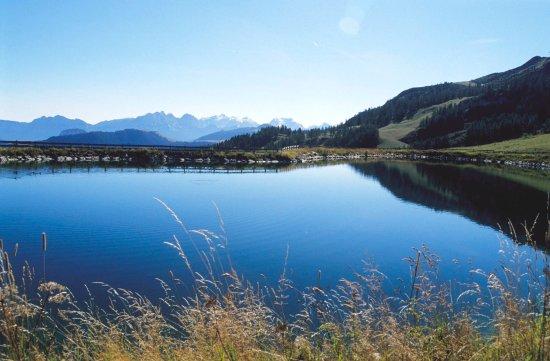Вайдринг, Австрия: Bergbahn Steinplatte