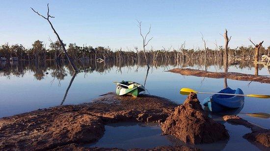 Barcaldine, Australia: Free kayaks!