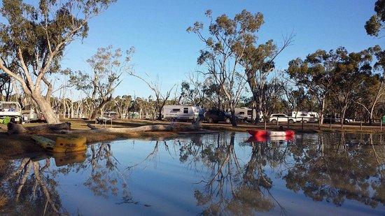 Barcaldine, Australia: Lara wetlands!