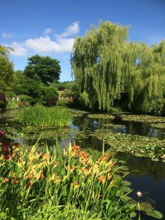 Huis en tuinen van Claude Monet: Etang