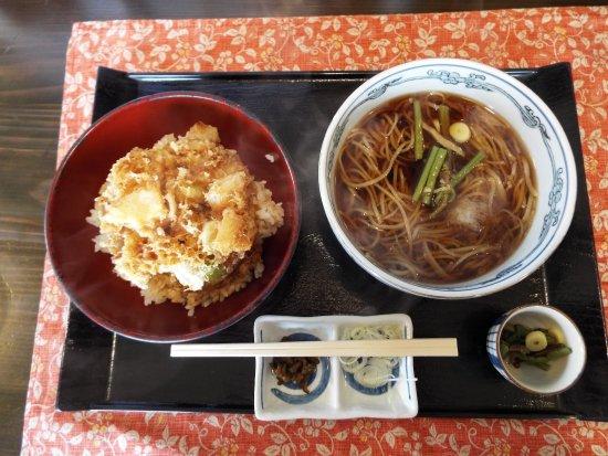 "Hiratsuka, Japan: 私が食べた""かき揚げ丼とお蕎麦""のセット。"