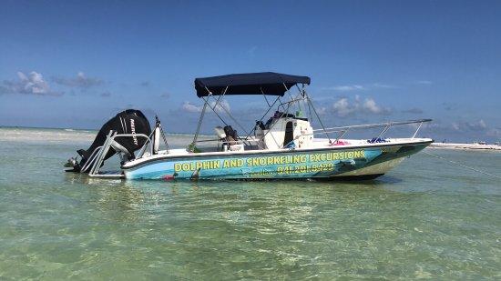 Cortez, FL: Coastline Dolphin & Snorkeling Excursions