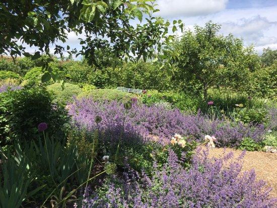 Stockbridge, UK: stunning gardens