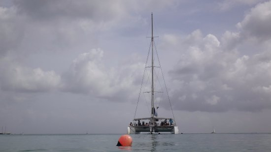 Paynes Bay, Barbados: Catamaran Cruises