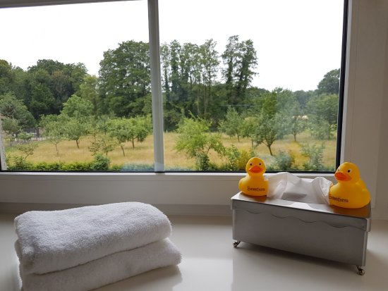 Steinhagen, Allemagne : Particolare del bagno