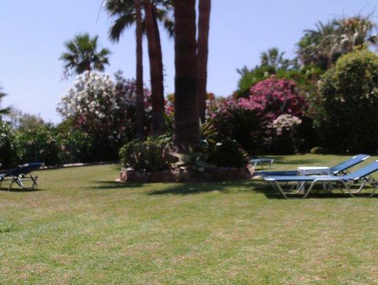 Rododafni Beach Holiday Apartments & Villas Photo