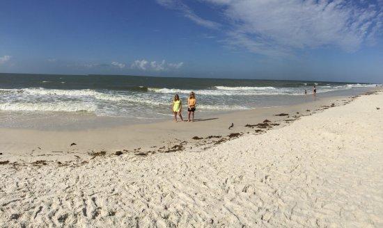 Gulf Shores Plantation ภาพ
