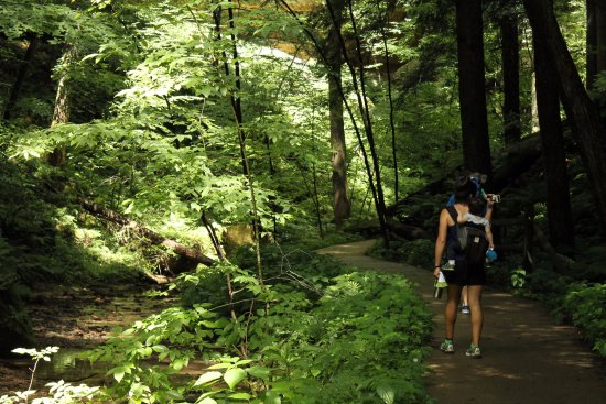 Rockbridge, OH: Paved hiking trail