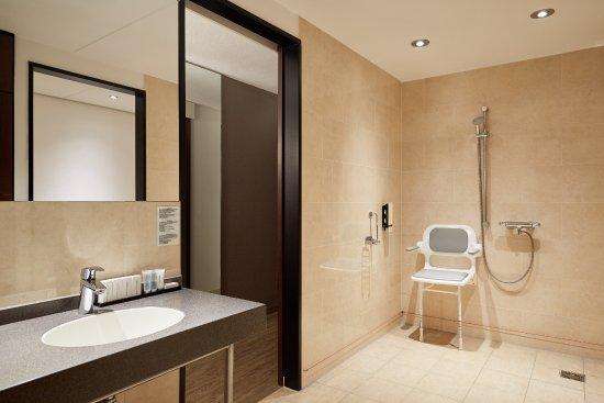 Zwijndrecht, Holandia: Badkamer mindervalidekamer Van der Valk Hotel ARA