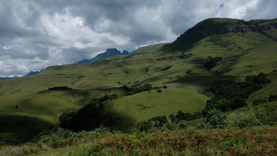 Foto de Inkosana Lodge