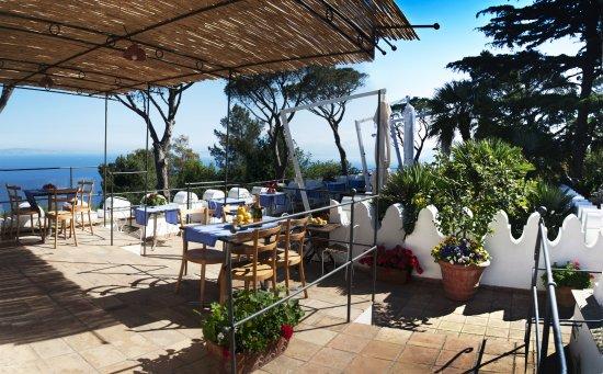 Cafe Casa Oliv Villa San Michele Anacapri Restaurant